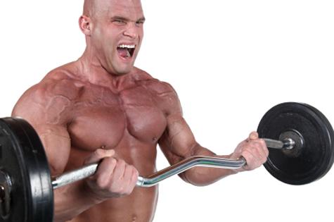 best muscle building program