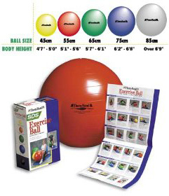 the best exercise ball is the thera band exercise ball